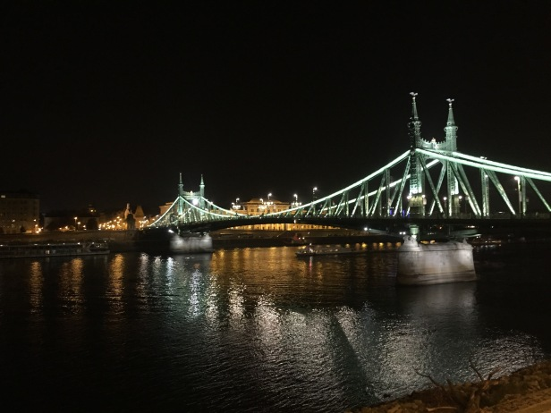 The Liberty Bridge. There are several huge bridges connecting Buda and Pest, the two sides of the city. They all had to be rebuilt after getting destroyed in WW2.